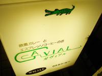 gavial.jpg