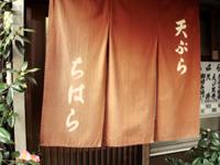 chihara.jpg