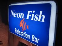 neonfish.jpg