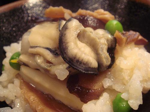 yoshiman05.jpg