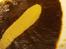 currydo06.jpg