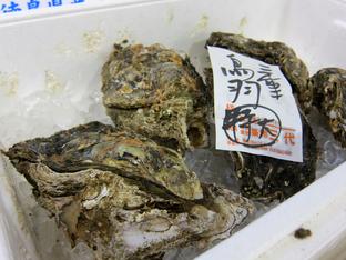 chikanoiki10.jpg