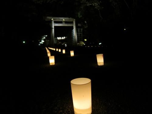 tokotonaomori01.jpg