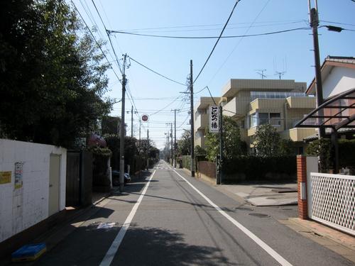 tsubaki02.jpg