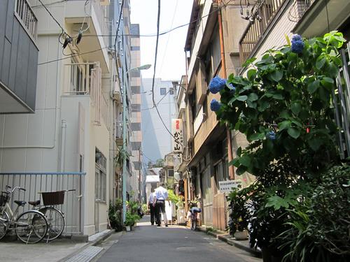 kakuyama01.jpg
