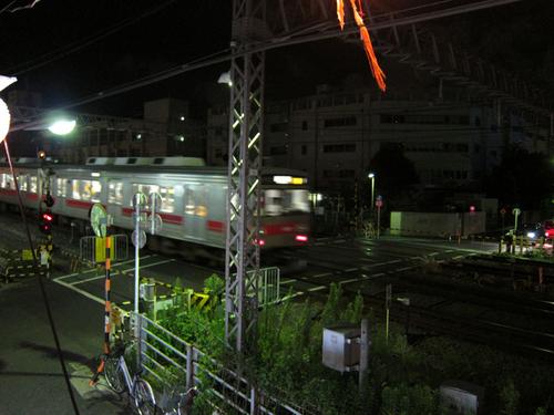 shirairu10.jpg