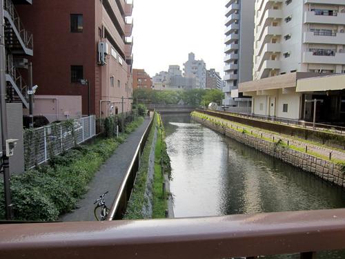 kawamoto01.jpg