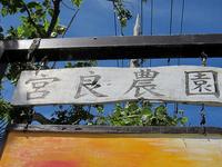 フルーツパーラー「宮良農園」で名蔵湾と見晴らすフルーツパフェ