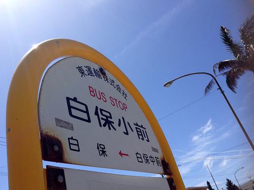 shirahoshokudo04.jpg