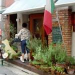 Pizzeria & CafeBar「Cagna Cagna」で ほうれん草のペンネ