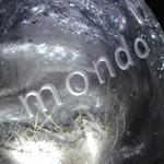Cucina Italiana「mondo」でふたつのMenu感性と世界の共有