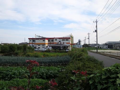 katsura02