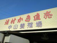 浦村かき直売「中山養殖場」で水に濯ぐ採れ立て生牡蠣と手焼きの焼牡蠣に感服