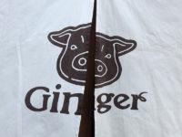 ポークジンジャー専門店「Ginger」で豚バラ生姜かポーク生姜かサワーな夜の顔